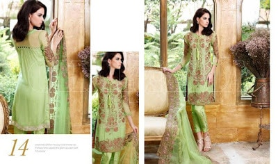 charizma-signora-winter-chiffon-dresses-collection-2016-for-women-10