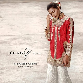 elan-fall-luxury-women-dresses-vital-collection-2016-7