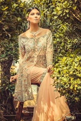 nadia-farooqui-frosted-encounter-bridal-formal-dresses-collection-2016-17-full-catalog-1