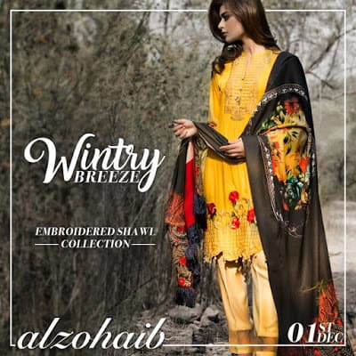 Al-Zohaib-wintry-breeze-embroidered-shawl-collection-2017-for-women-4