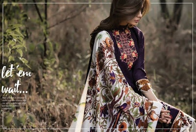 Al-Zohaib-wintry-breeze-embroidered-shawl-collection-2017-for-women-10