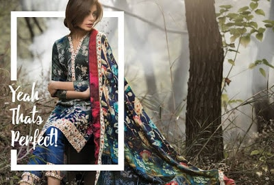 Al-Zohaib-wintry-breeze-embroidered-shawl-collection-2017-for-women-14