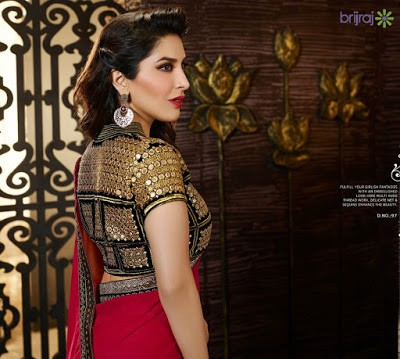 indian-ethnic-wear-blouse-designs-2017-for-silk-sarees-1