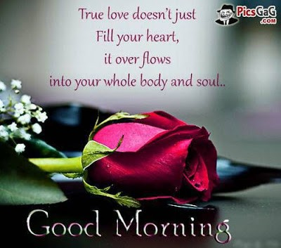 True love doesn't just fill your heart Good Morning