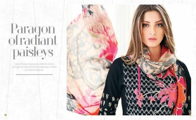 charizma-bloom-winter-embroidered-velvet-pashmina-shawl-collection-18