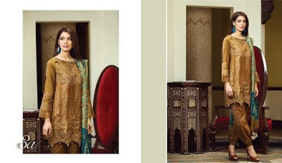 classy-and-stylish-shahmina-imperial-winter-silk-dresses-collection-2017-14