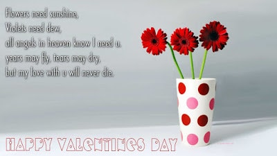 special-happy-valentines-day-2017-romantic-messages-for-wife-14