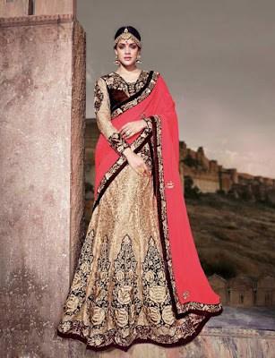 India-paithani-saree-designs-maharashtrian-blouse-patterns-2