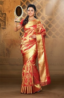 Stylish-indian-embroidered-bridal-saree-2017-for-brides-12