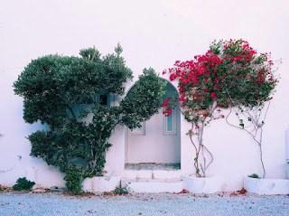 Smoothie-bikini-guide-greece-visit-island-cyclades-paros-naoussa-17