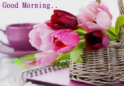 Cute-good-morning-wishes-quotes-with-text-messages-for-him-or-her-5
