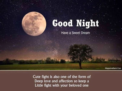 Romantic-good-night-msg-for-her-with-images-and-quotes-8